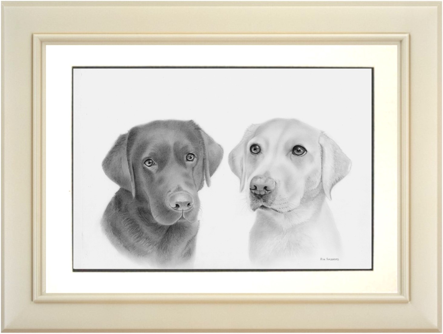 Ipswich Pet Portrait Artist
