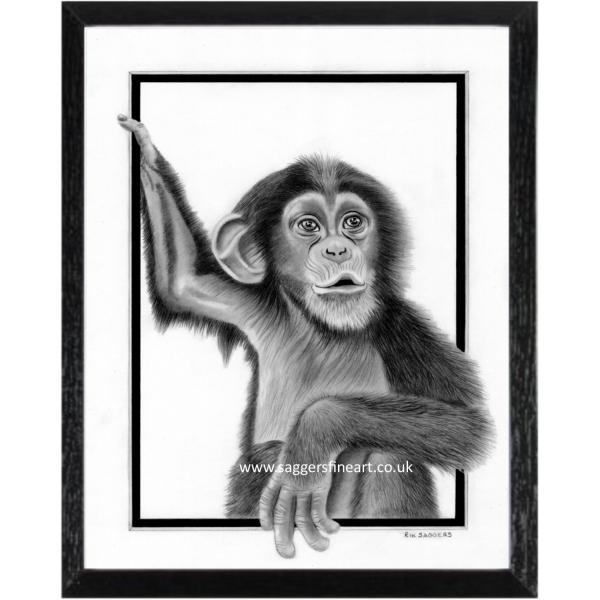 The Chimp - Original Drawing