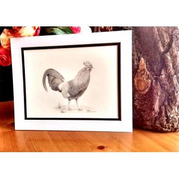 """Kevin"" the cockerel print."