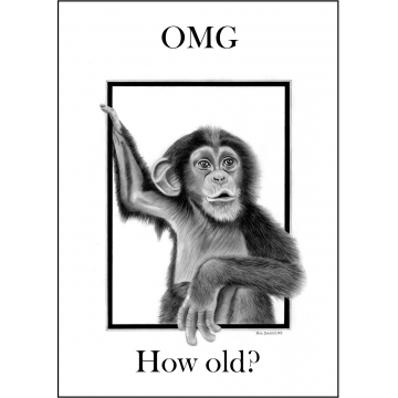 Funny Chimp Birthday card - Code 013