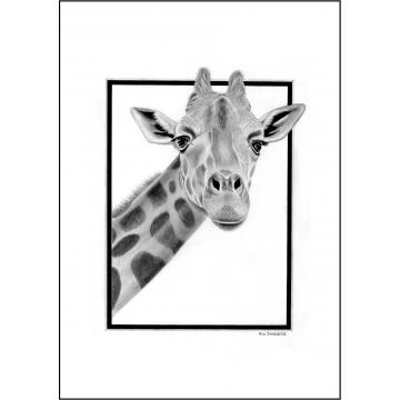 Classic giraffe general greeting card - Code 025