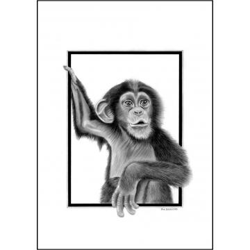 Classic chimp general greeting card - Code 026
