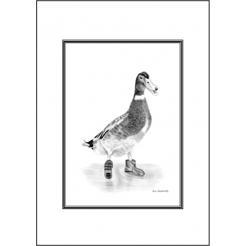 Funny duck general greeting card - Code 030