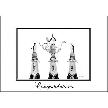 Elegant Penguin congratulations card - Code 048