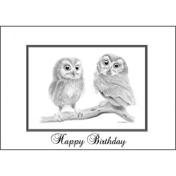 Elegant baby owls birthday card - Code 050
