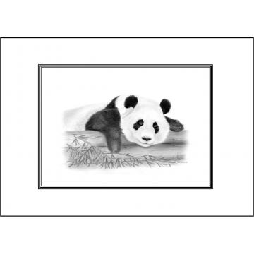 Panda general greeting card - Code 059