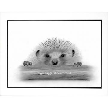 Henry the Hedgehog print.