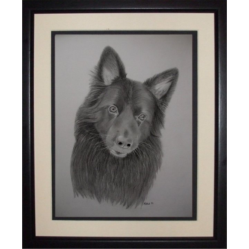 Original drawing,  German Shephard, Commission