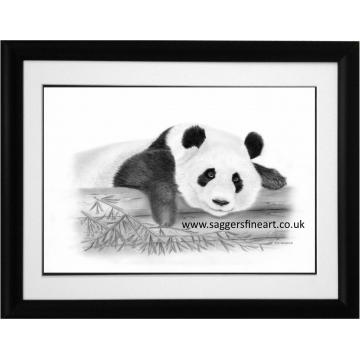 Resting Panda Original Drawing - SOLD