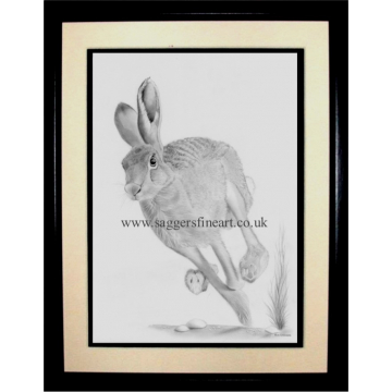 The Running Hare - Original drawing - SOLD