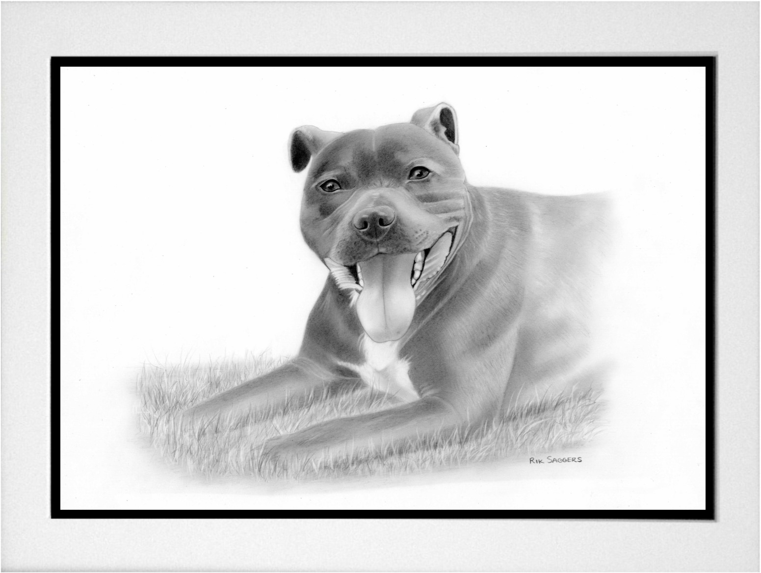 Ipswich Pet Portrait Artist