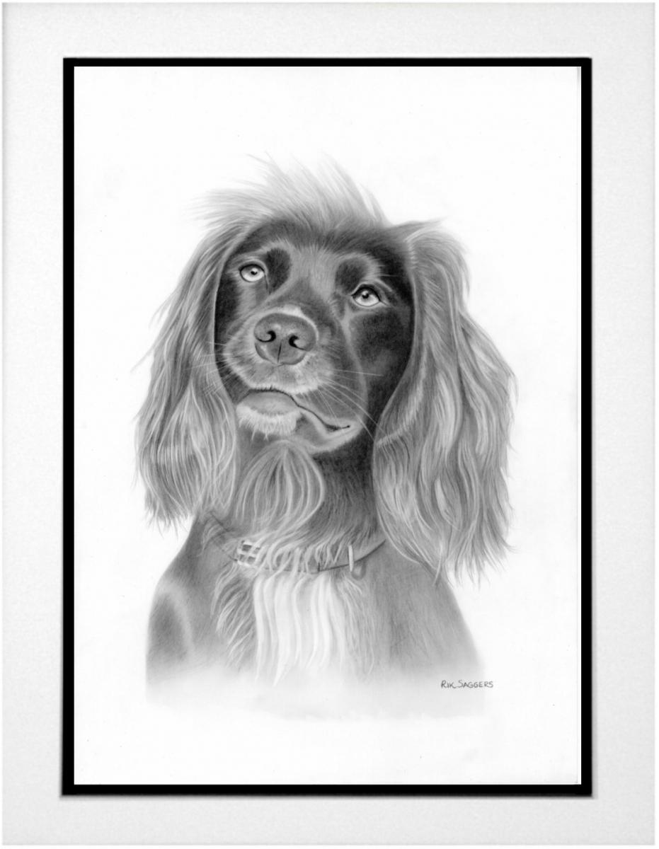 Ipswich portrait artist.